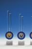 Trofeo con Barras de Cristal